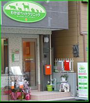 東京都墨田区わかばペットクリニック